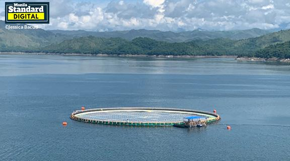 Floating solar project started in Magat Dam