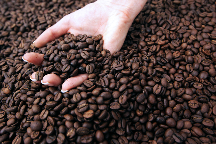 Coffee froths to new highs as Brazil frost hits crops