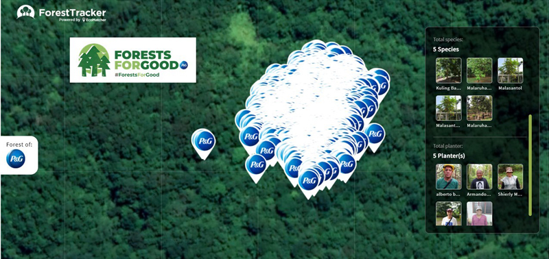 Consumer goods company Procter and Gamble (P&G) Philippines launches the Forests for Good program to help in the reforestation efforts in the Sierra Madre Mountain Range.