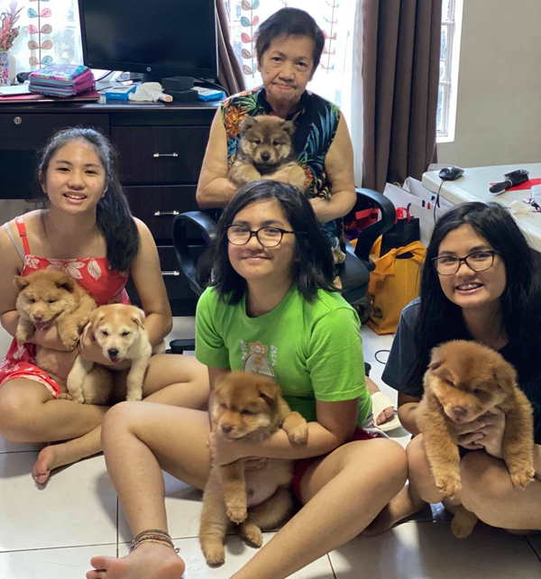 These human kids provide not only love but also the right food for their pups for them to grow up healthy and strong. Here are the Hammer Sisters Chelsea, Nikki and Chynna and their Lola Mama Chie with their Chowsky pups. These pups have been very therapeutic for these girls, especially during the pandemic.