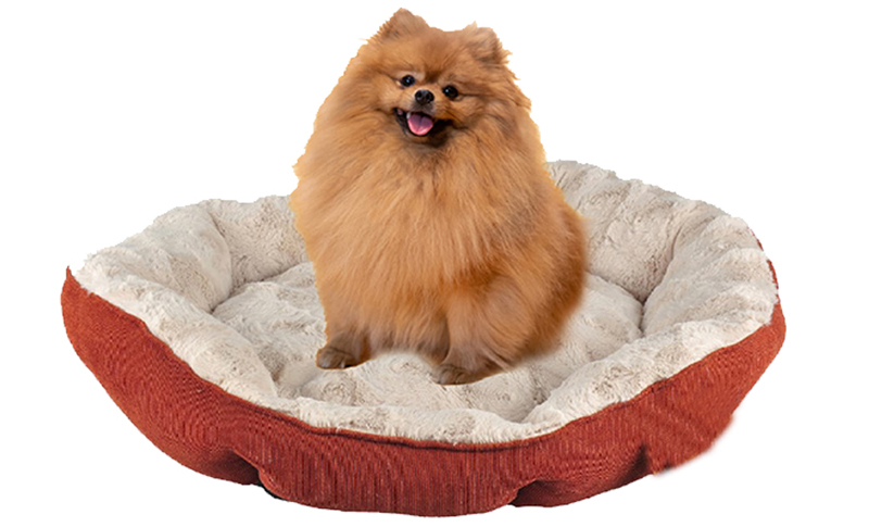 Keep dogs comfortable with a plush bed.