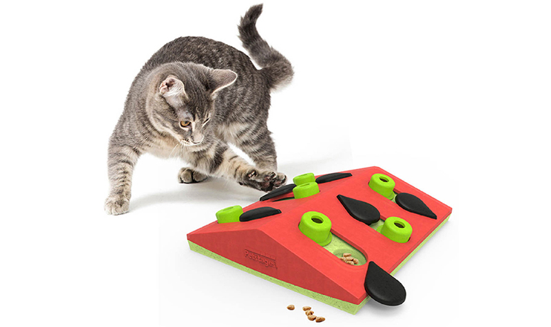 Nina Ottosson Pet Stages Melon Madness puzzle toy