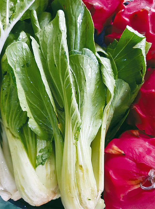 The healthy bokchoy is chopped into small pieces and included in other boiled vegetables of dogs such as pumpkin or carrots. A little meat is added.